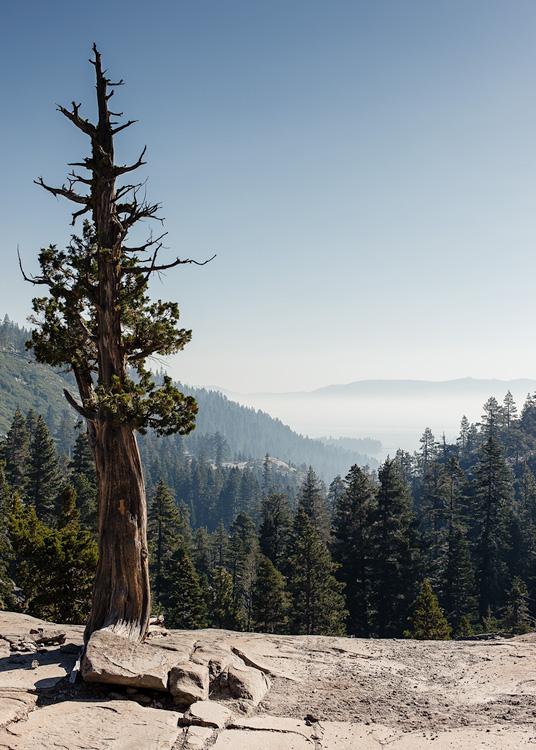 Tahoe Engulfed